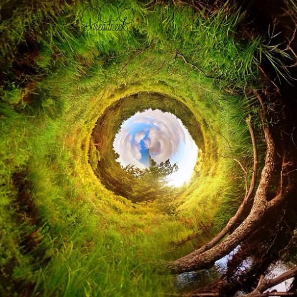 Through-the-rabbit-hole